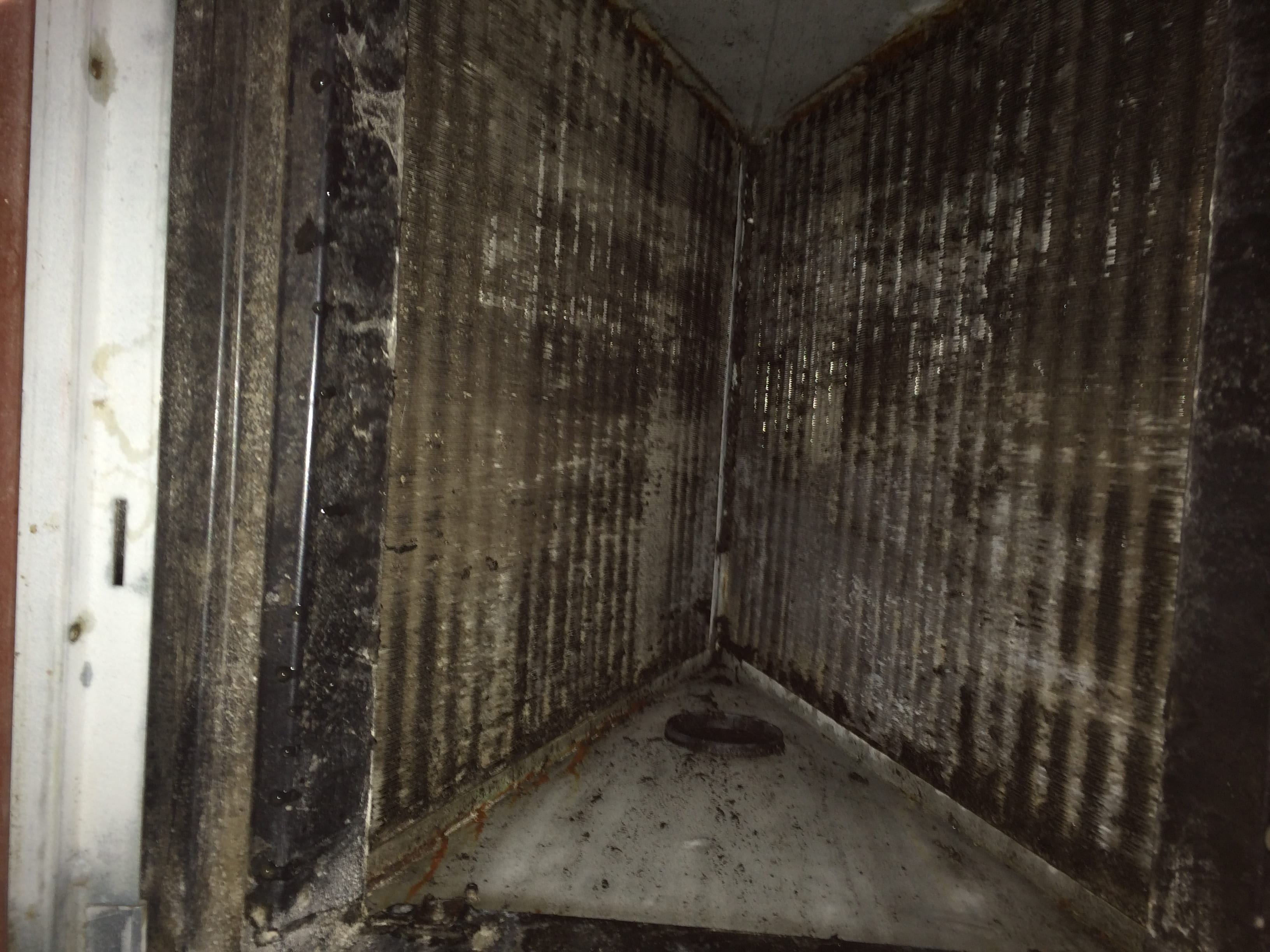 Clogged Coils Found In Ac Unit Mt Pleasant Renaissance